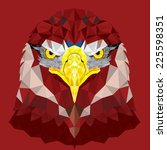 red eagle with geometric...   Shutterstock .eps vector #225598351