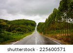 road in the forest and use low...   Shutterstock . vector #225600571