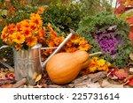 Orange Pumpkin  Watering Can...