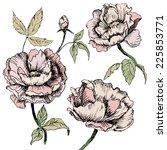 floral card. vintage vector... | Shutterstock .eps vector #225853771
