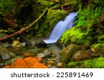 small waterfalls in rainforest  ... | Shutterstock . vector #225891469