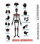 vector set of human anatomy...   Shutterstock .eps vector #225905989