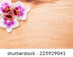 orchids bloom. white with pink... | Shutterstock . vector #225929041