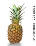 pineapple isolated in white | Shutterstock . vector #22610011
