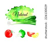 watercolor background. tomato.... | Shutterstock .eps vector #226130029