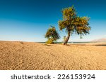 a beautiful beach on the sicily | Shutterstock . vector #226153924