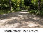 A Dirt Road Through A Forest. ...