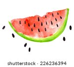 watercolor illustration of... | Shutterstock .eps vector #226236394