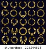 set of silhouette circular... | Shutterstock . vector #226244515