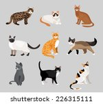 Stock vector set of cute cartoon kitties or cats with different colored fur and markings standing sitting or 226315111