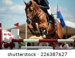 Stock photo equestrian sports horse jumping show jumping horse riding themed photo 226387627