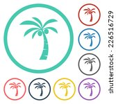 coconut tree icon | Shutterstock .eps vector #226516729