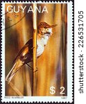 "Small photo of GUYANA - CIRCA 1988: A stamp printed in Guyana from the ""Fauna and Flora - Birds, Fungi, Cats and Cacti "" issue shows Reed Warbler (Acrocephalus scirpaceus), circa 1988."