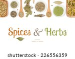 spices and herbs on white... | Shutterstock . vector #226556359
