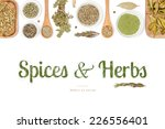 spices and herbs on white... | Shutterstock . vector #226556401