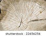 wood texture | Shutterstock . vector #22656256