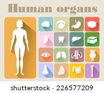 icons of human organs flat... | Shutterstock .eps vector #226577209