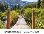 hike in glacier national park ... | Shutterstock . vector #226748425