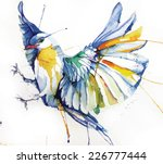 Stock vector watercolor style vector illustration of bird 226777444