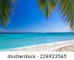 tropical sea under the blue sky | Shutterstock . vector #226923565
