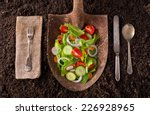 Garden Salad Organic Farm To...