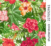 seamless exotic pattern with... | Shutterstock .eps vector #227052961