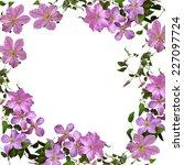 Clematis   Floral Frame  ...