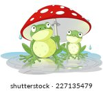 Two Frogs Are Hiding From The...