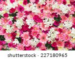 Stock photo beautiful flowers background for wedding scene 227180965