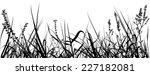 grass   black detailed...