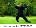 Man Practicing Tai Chi In The...