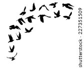 doves and pigeons set for peace ... | Shutterstock .eps vector #227351509