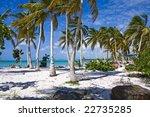 beautiful caribbean beach with... | Shutterstock . vector #22735285