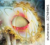 female carnival mask | Shutterstock . vector #227484841