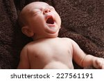 new born baby peacefully... | Shutterstock . vector #227561191