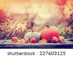 Autumn Nature Concept. Fall...
