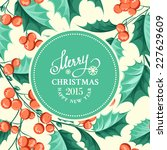 christmas mistletoe holiday... | Shutterstock .eps vector #227629609