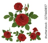 red roses bouquet with leaves.... | Shutterstock .eps vector #227660857