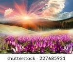 mountain ranges of ukraine with ... | Shutterstock . vector #227685931
