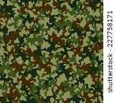 seamless camouflage pattern | Shutterstock .eps vector #227758171