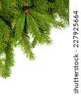 christmas green framework... | Shutterstock . vector #227925664