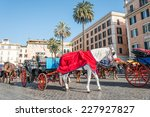 Horses And Carriages Piazza Di...