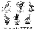 Stock vector stork heron crane and egret birds vector illustrations in black and white side view showing the 227974507