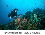 diver and various coral reefs... | Shutterstock . vector #227975281