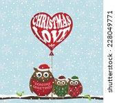 christmas owls on snowflake... | Shutterstock .eps vector #228049771