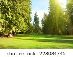 green lawn with trees in park... | Shutterstock . vector #228084745