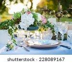 dinner invitation  beautiful... | Shutterstock . vector #228089167