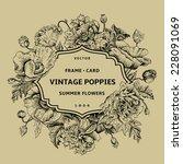 vintage floral frame with... | Shutterstock .eps vector #228091069