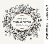 vintage floral frame with... | Shutterstock .eps vector #228091075