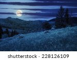 slope of mountain range with pine trees and meadow at night in full moon light - stock photo